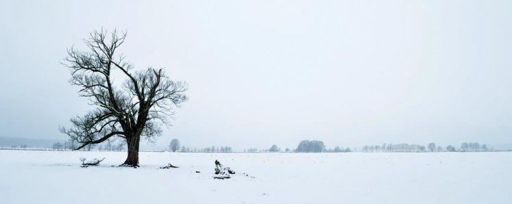 Winterlandschaft in Brandenburg