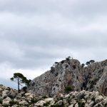 Wanderung La Trappa - Am Berg
