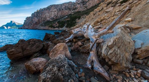 Wanderung Port de Pollença - Cala Boquer